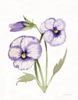 Easter Blessing Flowers VIII Fine Art Print