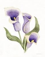 Easter Blessing Flower III Fine Art Print