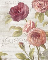 French Roses III Fine Art Print