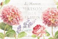 Maison Des Fleurs II Fine Art Print