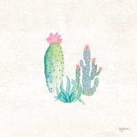 Bohemian Cactus V Framed Print