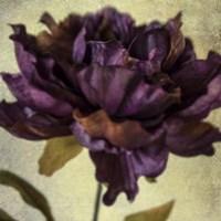 Lush Vintage Florals IV Fine Art Print