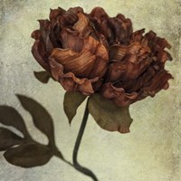 Lush Vintage Florals V Fine Art Print