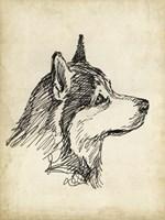 Breed Studies X Fine Art Print