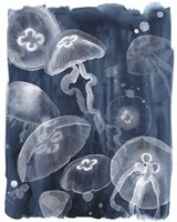 Moon Jellies I Framed Print