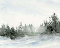 Evergreens in the Distance I Fine Art Print