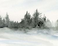 Evergreens in the Distance II Fine Art Print