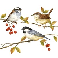 Birds & Berries I Fine Art Print