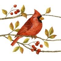 Birds & Berries III Fine Art Print