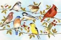 Birds & Berries V Fine Art Print