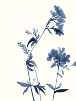 Indigo Wildflowers II Framed Print