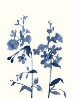 Indigo Wildflowers III Fine Art Print