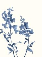 Indigo Wildflowers IV Fine Art Print