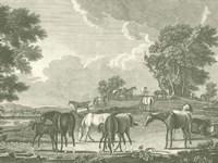 Equestrian Scenes I Fine Art Print