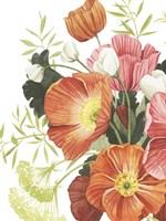 Blossom Solstice II Framed Print