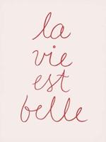 En France V Framed Print