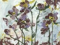 L'orchidee II Framed Print
