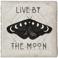 Live by the Moon I Framed Print