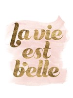 La Vie in Pink III Framed Print