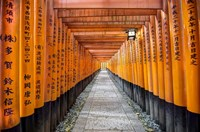 Fushimi Inari Taisha Shrine Kyoto Fine Art Print