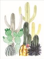 Cacti Party Fine Art Print