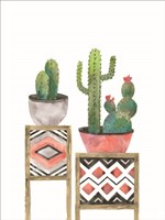 Cactus Tables with Coral Fine Art Print