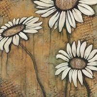 Daisies I Fine Art Print