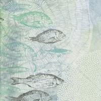Swimming Fish Fine Art Print