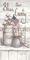 Bless Our Country Fine Art Print