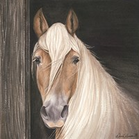 Farm Animal - Horse Fine Art Print