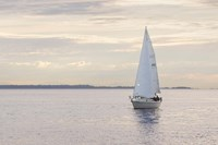 Sailboat in Semiahmoo Bay Fine Art Print