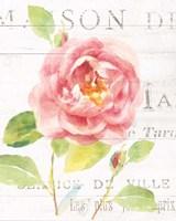 Maison des Fleurs V Fine Art Print