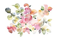Shades of Pink Watercolor Floral Fine Art Print