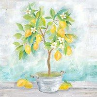 Country Lemon Tree Fine Art Print