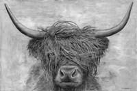 Norwegian Bison Fine Art Print