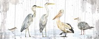 Birds of the Coast Rustic Panel Fine Art Print