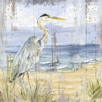 Birds of the Coast Rustic I Fine Art Print