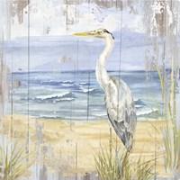 Birds of the Coast Rustic II Fine Art Print