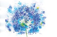 Blue Allium Fine Art Print