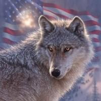 Lone Wolf America Fine Art Print