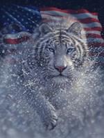 White Tiger America Fine Art Print