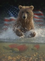 Brown Bear Fishing America Fine Art Print