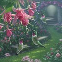 Hummingbird Haven - Square Fine Art Print
