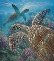 Sea Turtles - Turtle Bay Fine Art Print