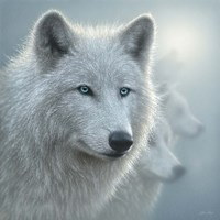 Arctic Wolves - Whiteout Fine Art Print