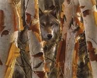 Wolves - The Guardian Fine Art Print