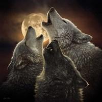 Wolf Trinity Fine Art Print