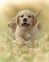 Golden Retriever Puppy - Dandelions Fine Art Print