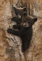Curious Cubs Fine Art Print