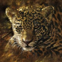 Jaguar Cub on Bark Fine Art Print